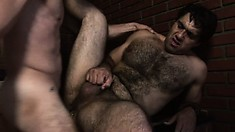 Hairy bear and his lover go through all their paces for a hot load