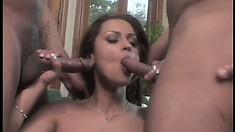 Ravishing babe Nikita Denise has two black guys pounding her wet holes