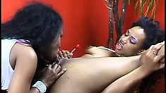 Two wonderful black girls getting involved in passionate lesbian sex